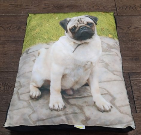 Matrace pro domácí mazlíčky - buldoček - Výprodej